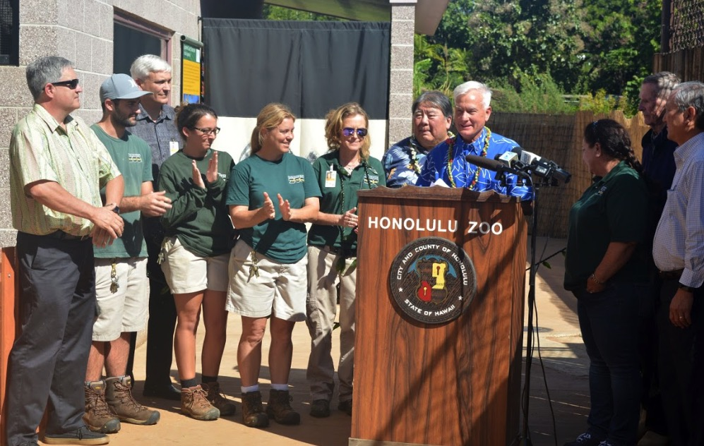 mayor-unveils-japanese-giant-salamander-exhibit-at-honolulu-zoo-.jpg